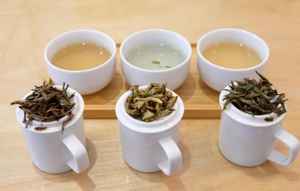 types of white tea